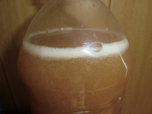 米のとぎ汁乳酸菌の作り方